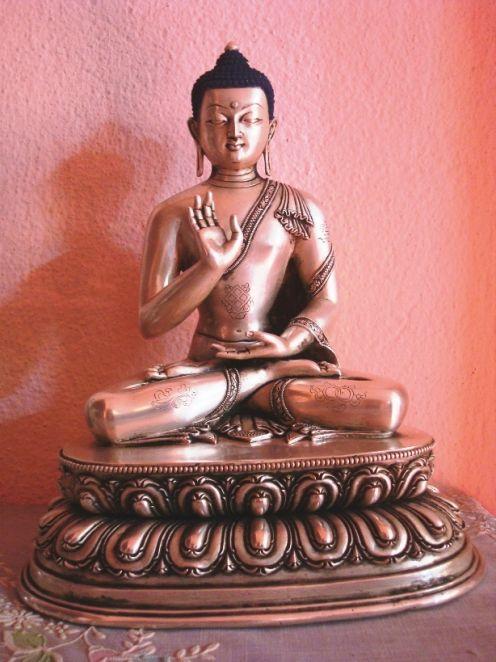Amoghsiddhi Dhayani Buddha Mudra